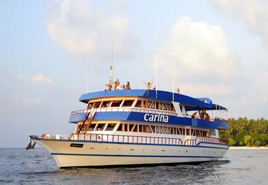 Дайвинг сафари на Мальдивах